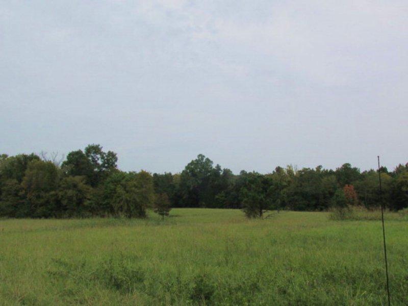 30 Acres Farm Land, Country Living : Lincolnton : Lincoln County : Georgia
