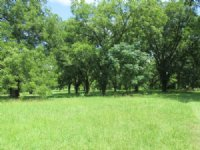 49+ Acres, Farm Land, Residential : Lincolnton : Lincoln County : Georgia