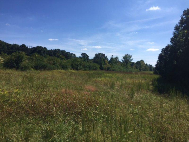 125+/- Acres Of Beautiful Farm Land : Harrison : Hamilton County : Tennessee
