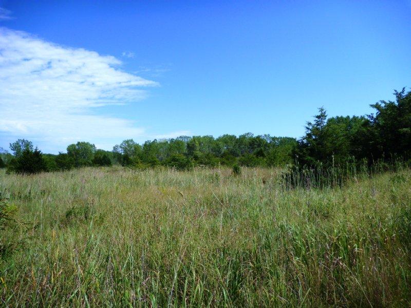 Jefferson County Playground : Fairbury : Jefferson County : Nebraska
