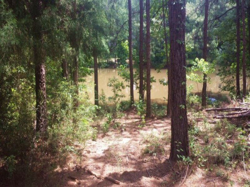 4.01 Acres Waterfront Land : Mccomb : Pike County : Mississippi