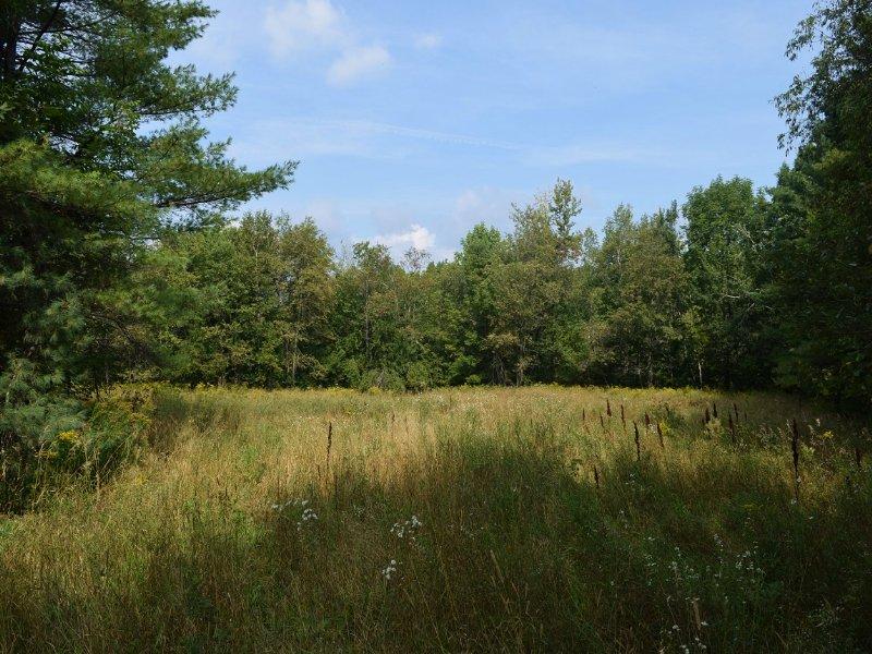 Frankfort Acreage : Frankfort : Waldo County : Maine