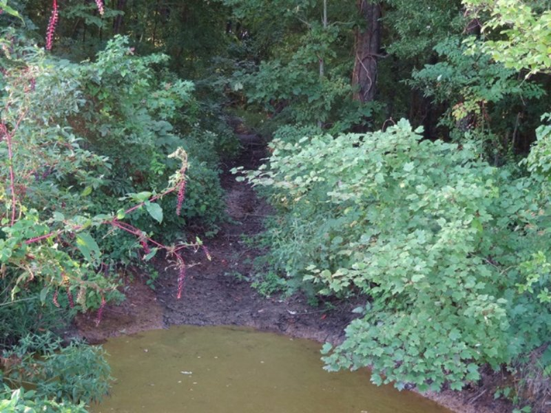76 Ml Acre Duck & Deer Lease : Palestine : Saint Francis County : Arkansas
