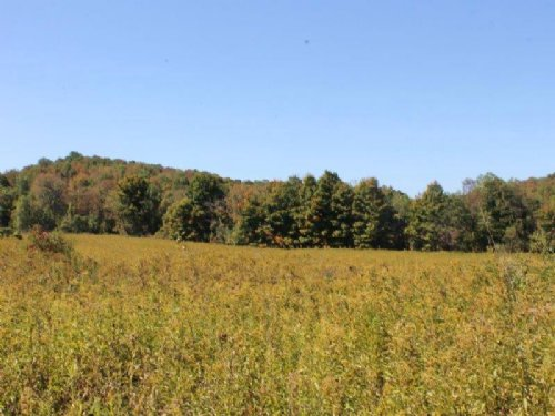 Country Building Lot 9 Acres : Columbia : Herkimer County : New York