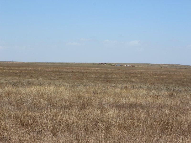 160 Acres Of Texas County Crp *pri : Hardesty : Texas County : Oklahoma