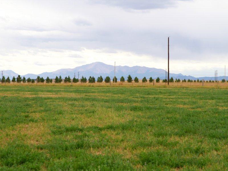 Elk Meadows : Elbert : Elbert County : Colorado