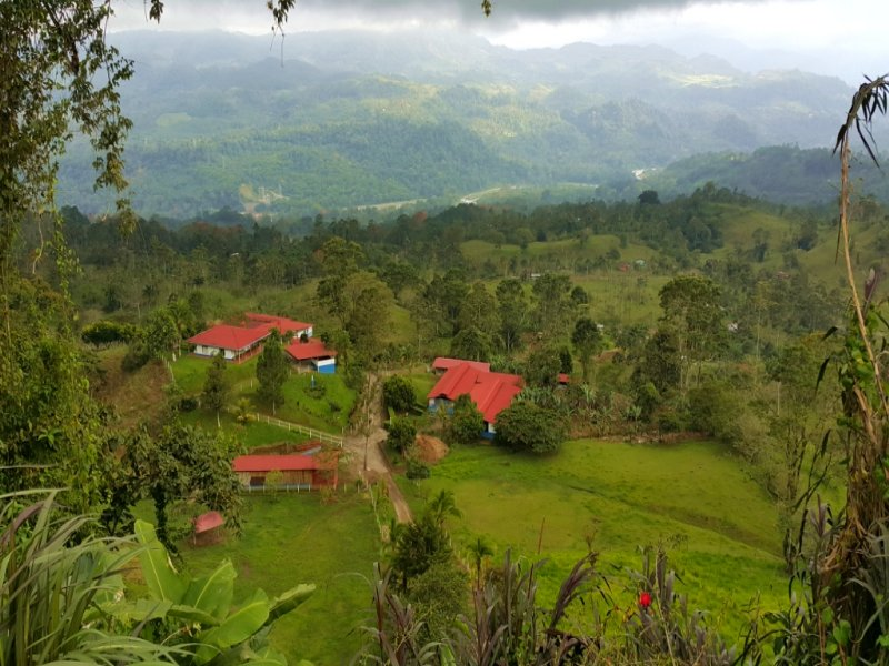 27 Ac Working Farm- 2 Houses : Turrialba De Cartago : Costa Rica