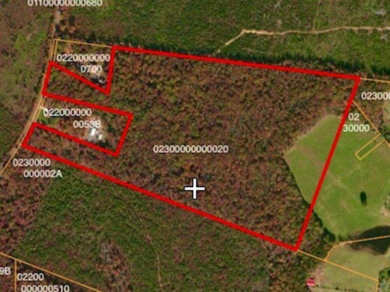 58+/- Heavily Wooded Acres : Locust Grove : Orange County : Virginia
