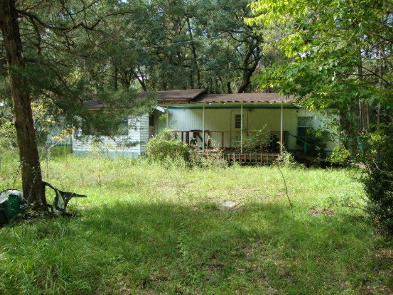 5 Acre Tract-770807 : Trenton : Levy County : Florida