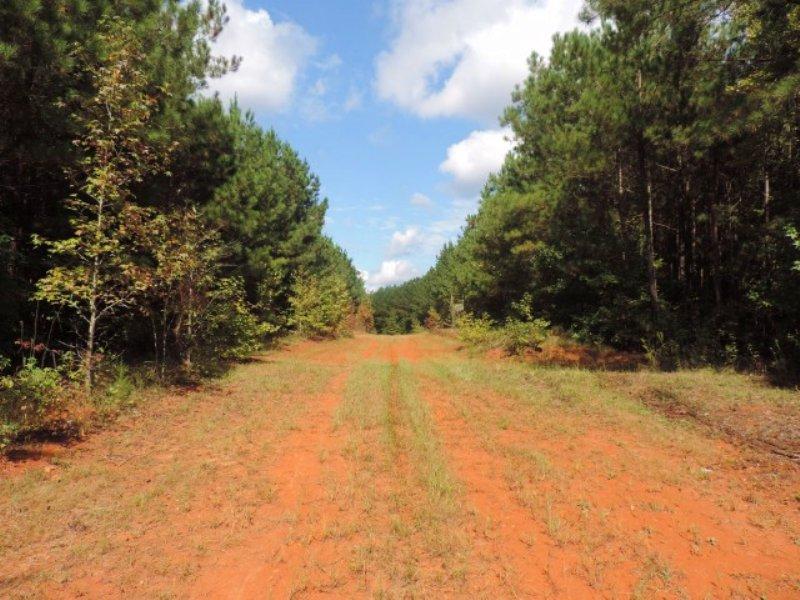 Development Tract : Rutledge : Morgan County : Georgia
