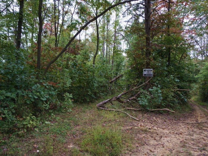 Northup Run Rd - 9.45 Acres : New Matamoras : Washington County : Ohio