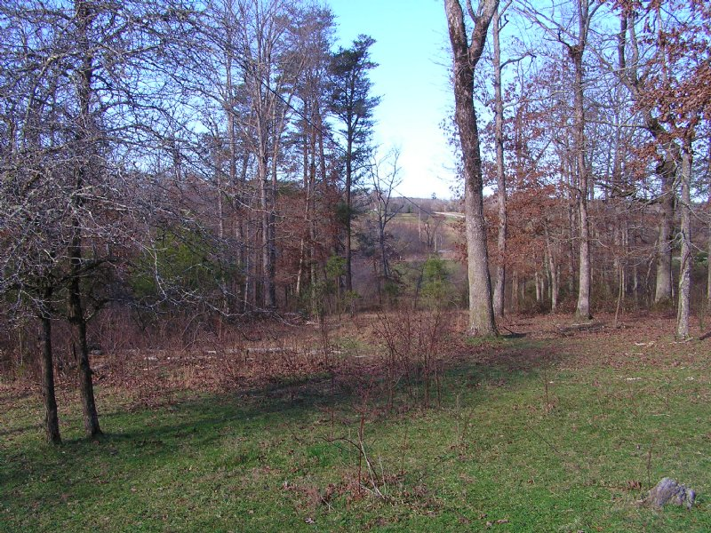 Creek, 5 Acres, : Spencer : Van Buren County : Tennessee