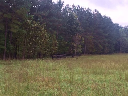 7.7+/- Acs Near Franklin St Forest : South Pittsburg : Marion County : Tennessee