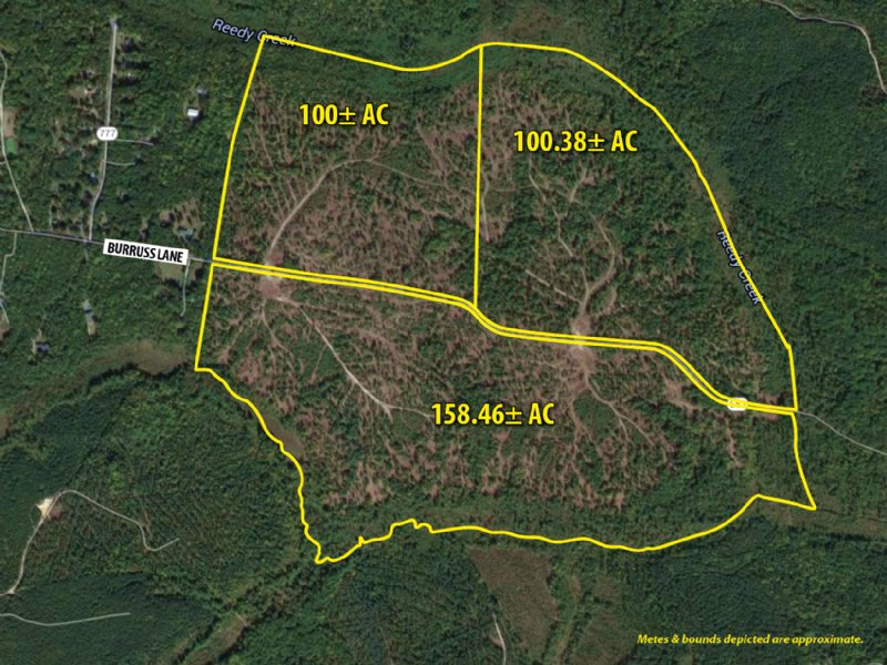 Accelerated Sale: 358± Acres : Ruther Glen : Caroline County : Virginia