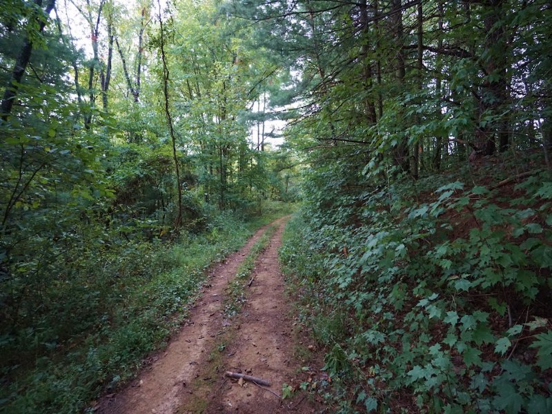 Fairview Ridge Rd - 40 Acres : New Matamoras : Washington County : Ohio