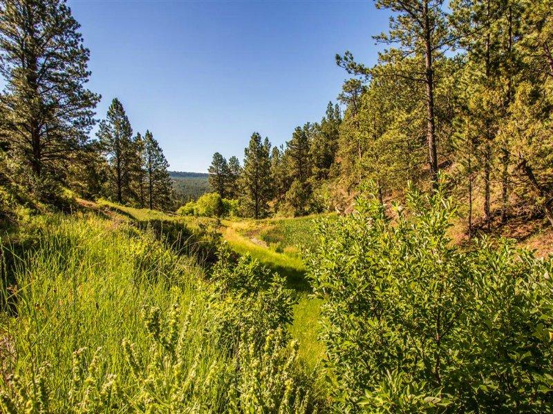 Fresh Water Ranch : Newcastle : Weston County : Wyoming