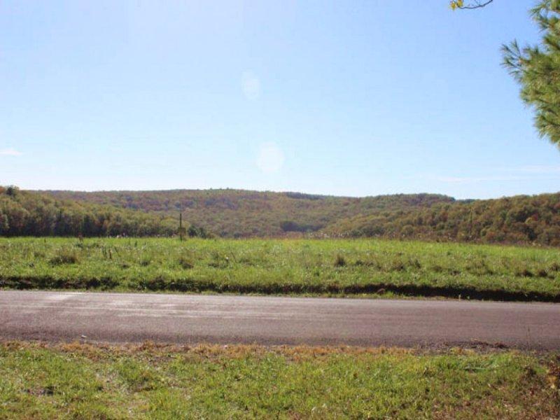 23 Acres Land In Benton : Benton : Columbia County : Pennsylvania