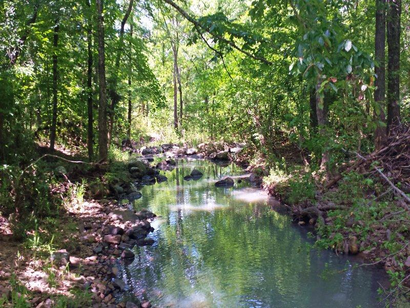 Medicine Springs Tract 1 : Finley : Pushmataha County : Oklahoma