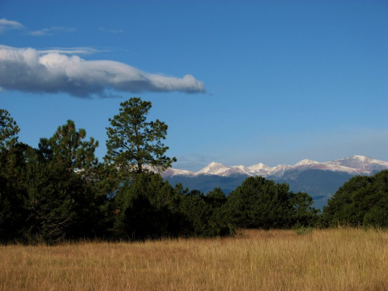 Mule Canyon Ranch & Holding -pr : Westcliffe : Custer County : Colorado