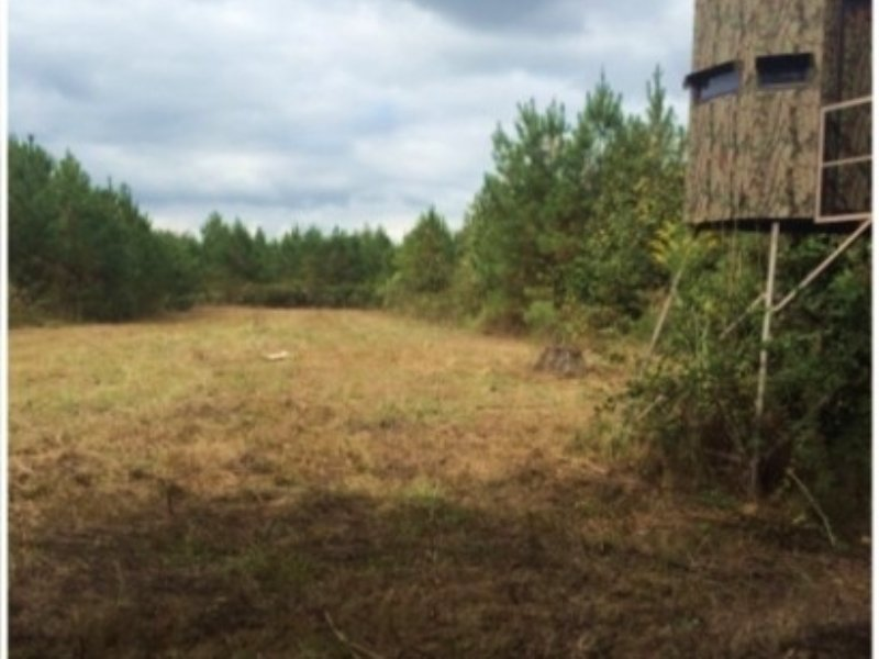 26.00 Acres Hunting Land, Ranch : Macon : Noxubee County : Mississippi