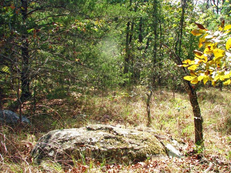 Medicine Springs Tract 4 : Finley : Pushmataha County : Oklahoma