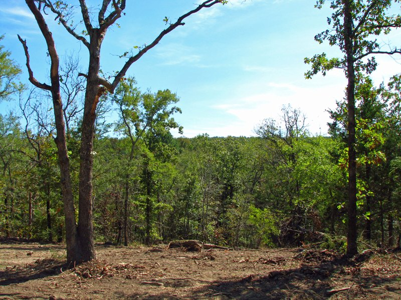 Medicine Springs Tract 6 : Finley : Pushmataha County : Oklahoma