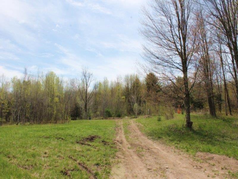 Land Near Oneida Lake Well & Septic : Camden : Oneida County : New York