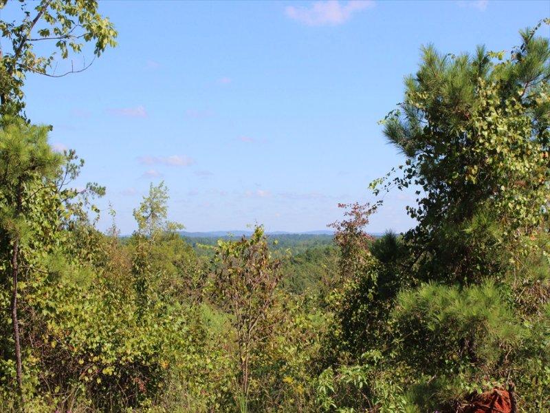 Affordability With Beautiful Views : Thomaston : Upson County : Georgia