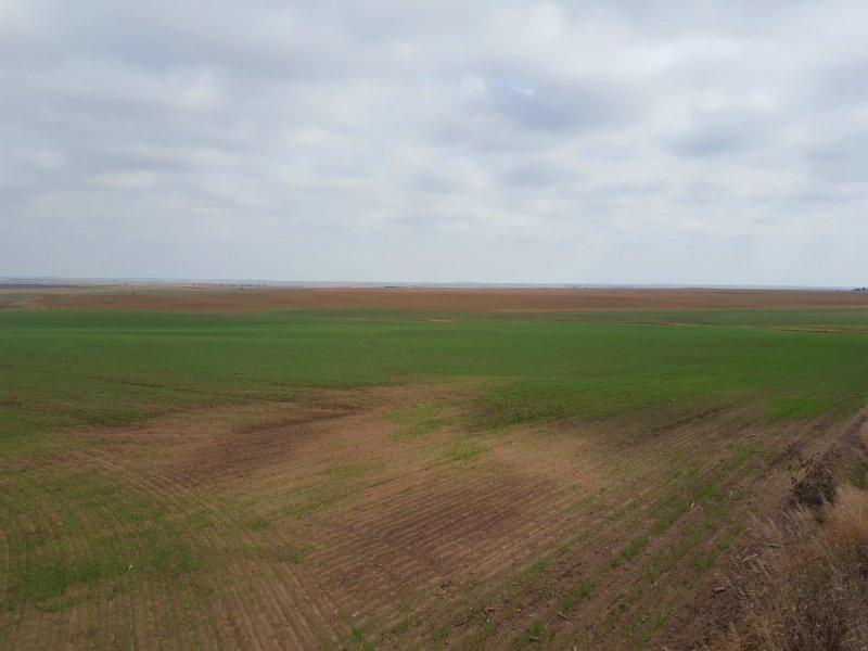 Elsie Section Farm : Elsie : Perkins County : Nebraska