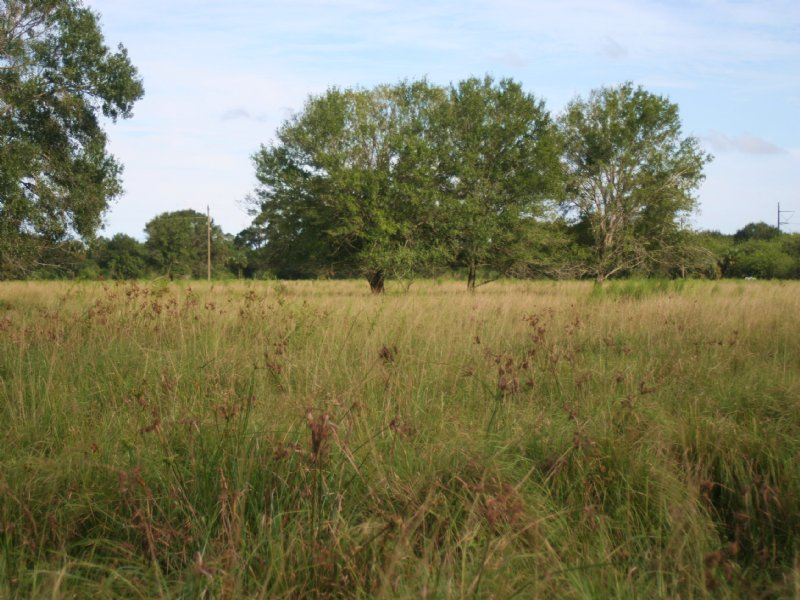 28.6ac Rural Homesite On Paved Road : Fort Pierce : Saint Lucie County : Florida