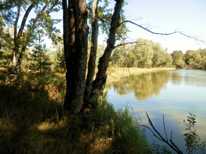 Wisconsin River - 45.60 Ac : Newbold : Oneida County : Wisconsin