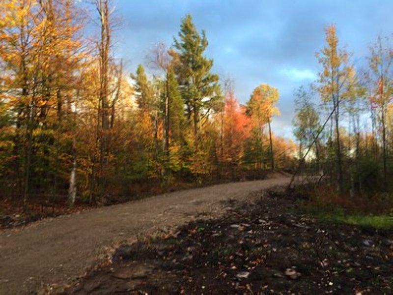 Adirondack Acreage : Potsdam : Saint Lawrence County : New York
