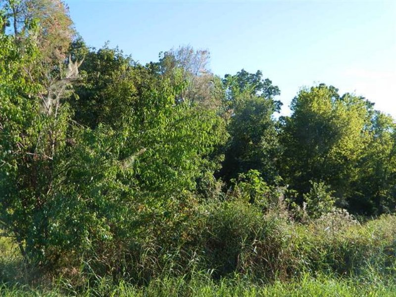 6.67 M/l Acres : Tahlequah : Cherokee County : Oklahoma