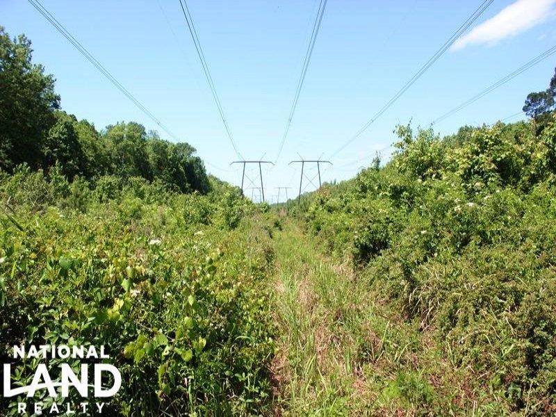 Palatka Riverfront Recreational Tra : Palatka : Putnam County : Florida