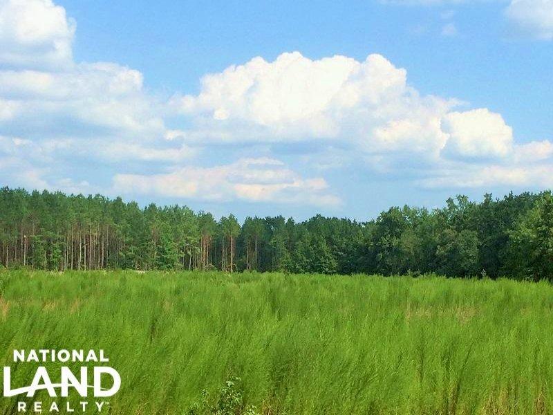 Vance Recreational Homesite : Vance : Orangeburg County : South Carolina