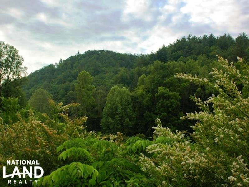 Smoky Mountain Acreage : Cosby : Cocke County : Tennessee