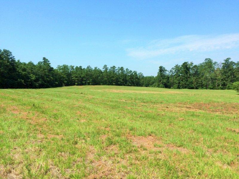Large Acreage Estate In Aiken : Aiken : Aiken County : South Carolina