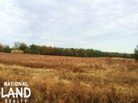 Private Estate OR Small Farm Tract : Barnwell : Barnwell County : South Carolina