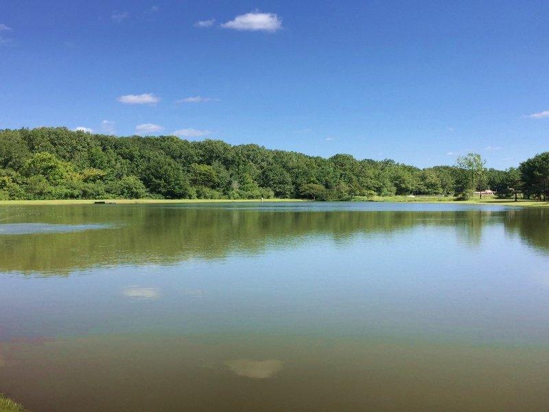 Tuscaloosa Lakefront Home : Tuscaloosa : Tuscaloosa County : Alabama