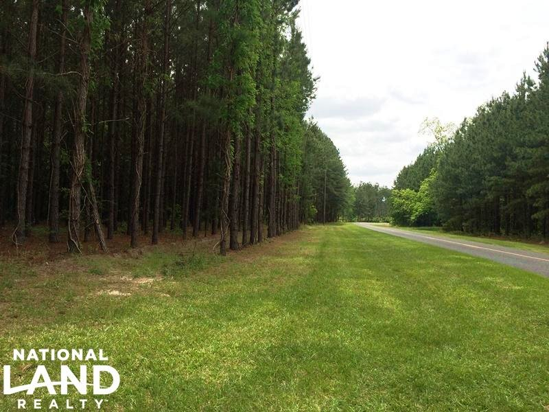 Estill Private Hunting Estate : Estill : Hampton County : South Carolina