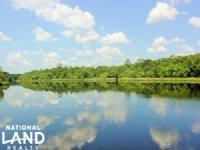 Satilla River Homesite in Woodbine : Woodbine : Camden County : Georgia