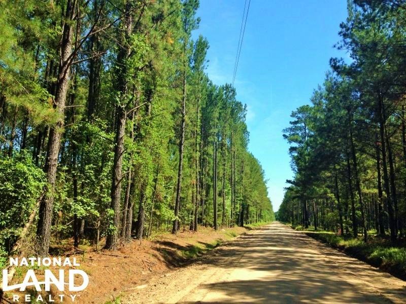 Newington Large Acre Recreational H : Newington : Effingham County : Georgia