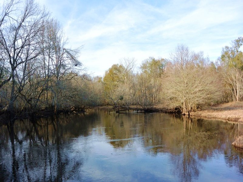 Recreational Homesite With River Ac : Kingstree : Williamsburg County : South Carolina