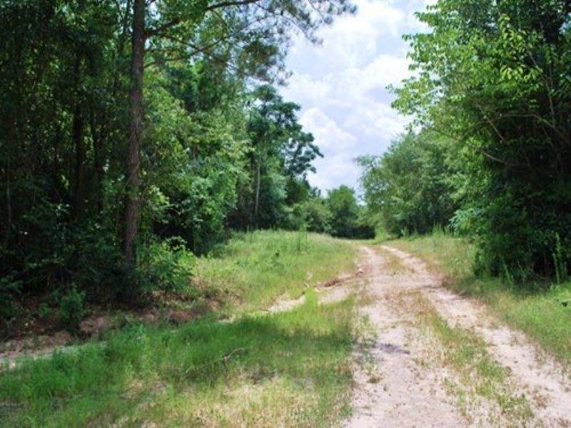 Edgefield Residential Development : Trenton : Edgefield County : South Carolina
