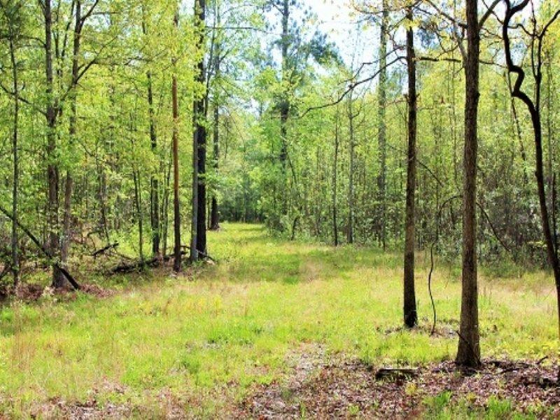 Bonneau Private Recreational Homesi : Bonneau : Berkeley County : South Carolina