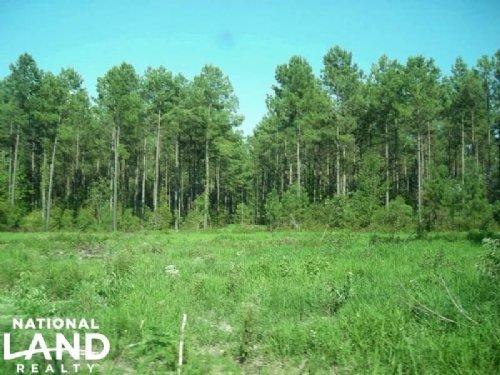Bonneau Recreational And Timber Inv : Bonneau : Berkeley County : South Carolina