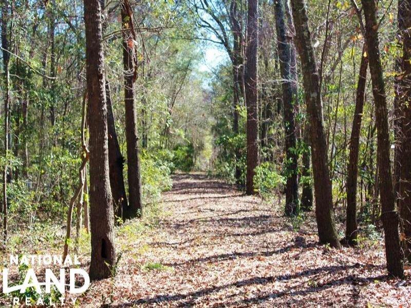 Johns Island Homesite : Charleston : Charleston County : South Carolina