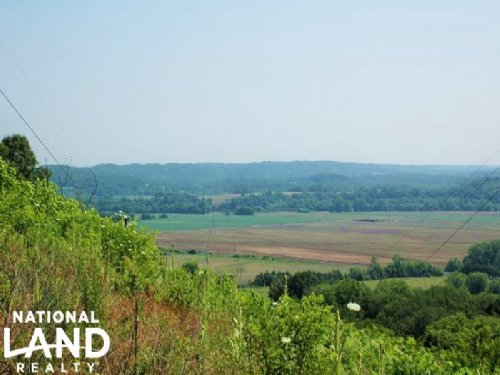 Recreational Land & Timber Investme : Newport : Cocke County : Tennessee