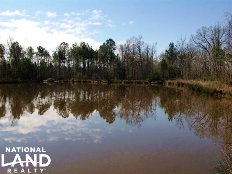 154.21 Acre Recreational Timber Inv : Sharon : Taliaferro County : Georgia