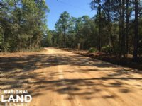 Reidsville Private Wooded Homesite : Reidsville : Tattnall County : Georgia